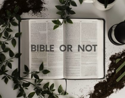 BIBLE or NOT - Truth and Error
